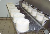 Lors de vos vacances en Auvergne découvrez la fabrication des fromages AOP.